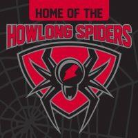 howlong spiders
